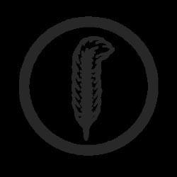 RP_grey_Logo_250_pix